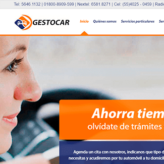 sitio web gestocar equilibrio visual